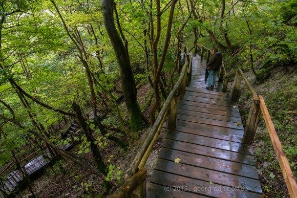 Fußweg zum Strand unterhalb des Königsstuhls - Bild Nr. 201509202899