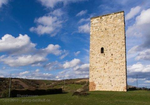 Der Schwabsburger Schlossturm - Bild Nr. 201603271130