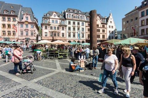 Mainzer Wochenmarkt - Bild Nr. 201605070166
