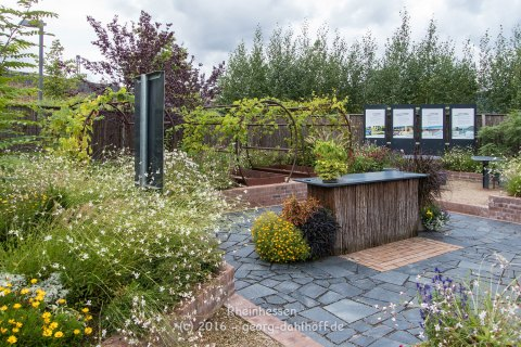 Binger Gärten 2016 - Bild Nr. 201608210721