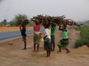 Young local women from the squatter neighborhoods carrying sticks for charcoal production, which can occur informally, anywhere