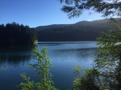 Mount Pickett looms above Mountain Lake.