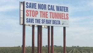 Sacramento/San Joaquin Delta, near Rio Vista
