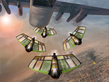 Flying Drones for Dinner?