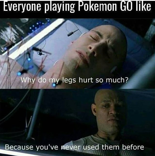 Ouch! regram @pokememes2go everyone's fit af now  #pokememes2go #pokelife #poke #pokemongo #pokemon #pokefit  #legday #hardwork #powerbank #pokelove