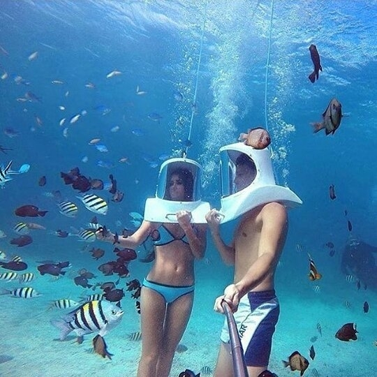 I'm not sure what that is but i wanna do it! regram  @fashionschics #underwater with bae Yes or No via @getoutfits @americanselection #fashionschics . . .  #fashion #fashionista #love #makeup #fashionable #model #selfie #likeforfollow #igers #followme #followforfollow #follow4follow #throwback #swag #selfies #picoftheday #like4follow #instalove #girlfriend #followtrain #followher #fitness #bored #bestoftheday #beach #abs #style #instagood