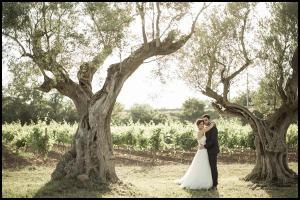 mariage-domaine-de-la-Baratonne-georges-panossian-photographe