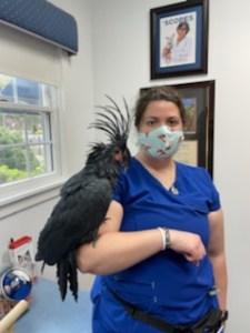 Christina Lopez Veterinary Nurse Georgetown Veterinary Hospital