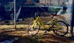 Residents Criticize Dockless Bike-Share Program
