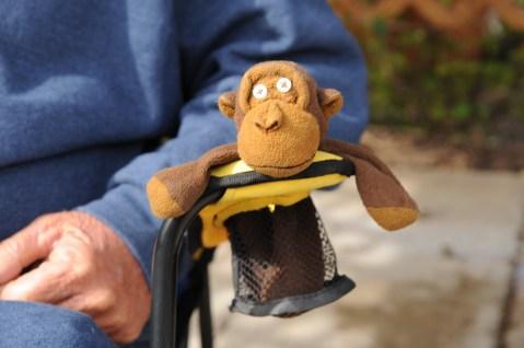Deano guarding Monkey