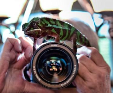 Granny-&Hugo-camera-lens