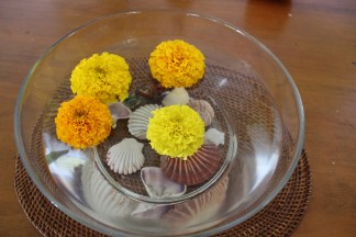 some of my marigolds floating with my seashells