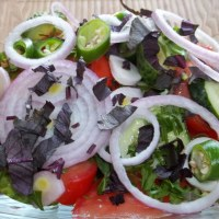 INTRODUCTION TO GEORGIAN SALADS