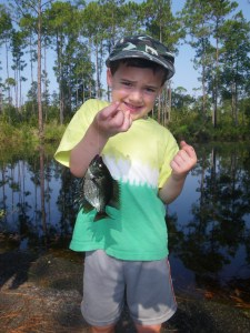 Nathanael Johnson of Blackshear caught his first flier in the Okefenokee Swamp on Saturday morning before the boat was launched.