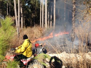 Region VI Game Management staff conducting prescribed burns on WMA lands in the area.