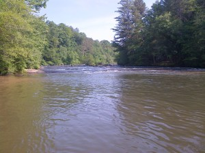 Deep pools below big shoals can be a great place to find stripers holding.