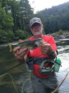 Nice redeye caught on the Chattooga.