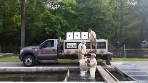 Trout stocking truck loading Aug 2015 resized