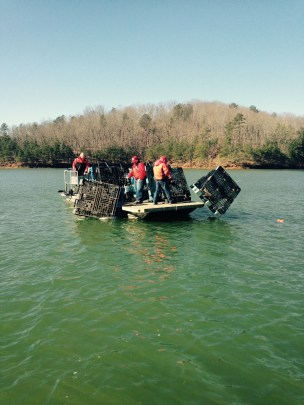 fish attractor carters pallets Feb 2016