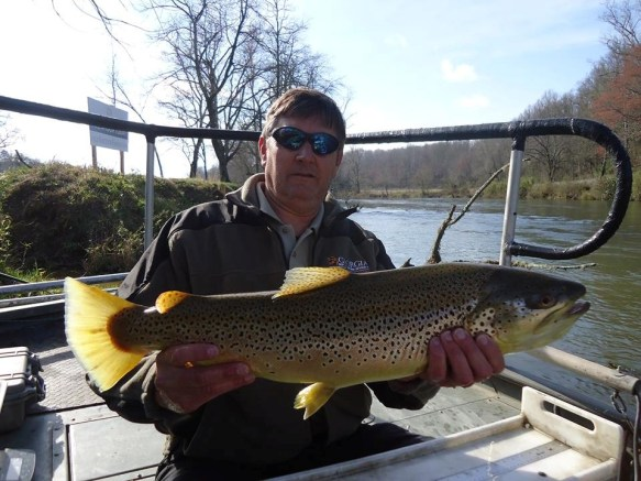 trout Brown 9.5lbs Blue Ridge TW  3_23_16
