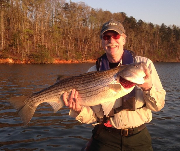 striper lanier 33in 4-4-16 JD w Ken resized