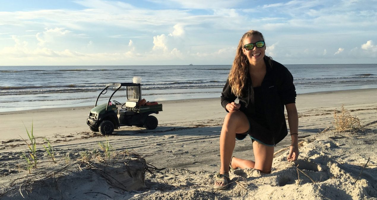 A Sea Turtle Tech's Summer on Sapelo