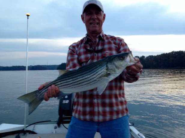 striper-on-fly-lanier-jimmyh-11-6-16