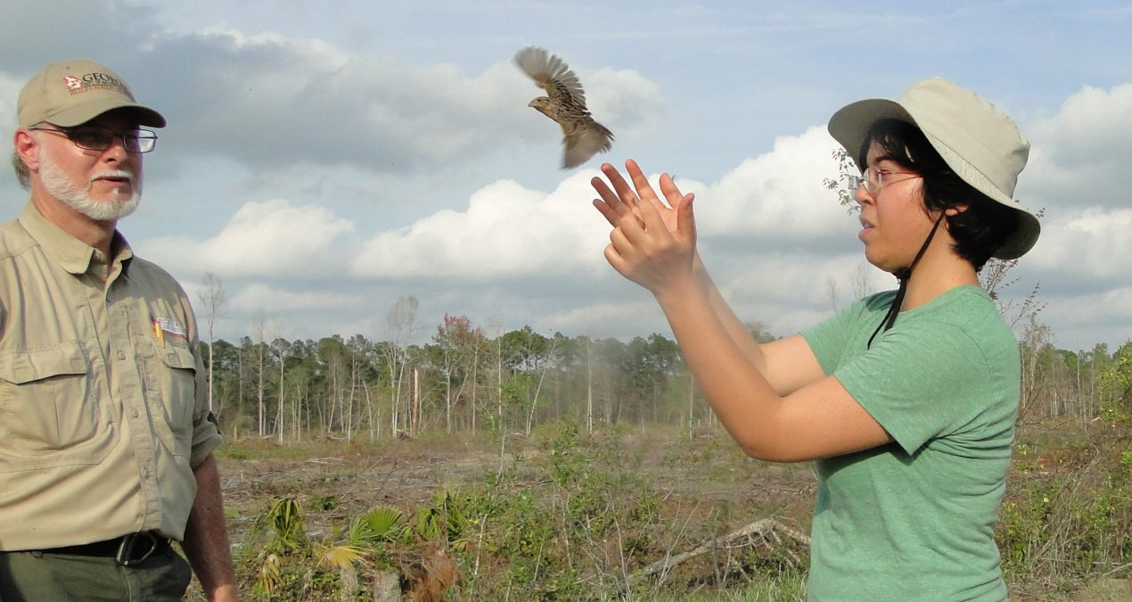 "We Have ""Wild"" Working Conditions: Want to Volunteer With Us?"