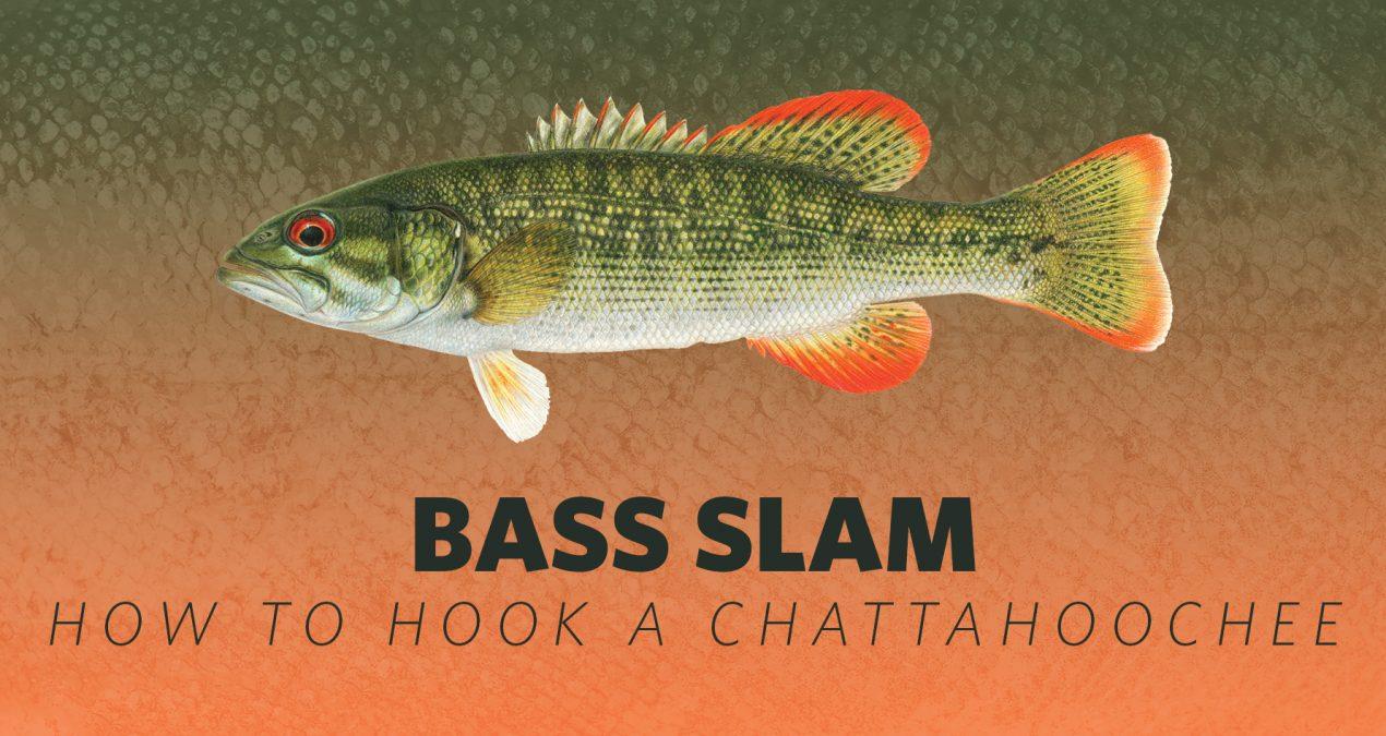 How to Hook A Bass Slam: Chattahoochee Bass
