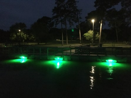 GA PFAs Fishing Pier Lights 4 18 - IMG_1424[4]