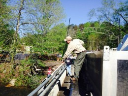 trout stocking JLT Helen apr2018 pic1 small