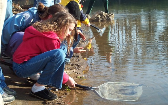 Children releasing sturgeon