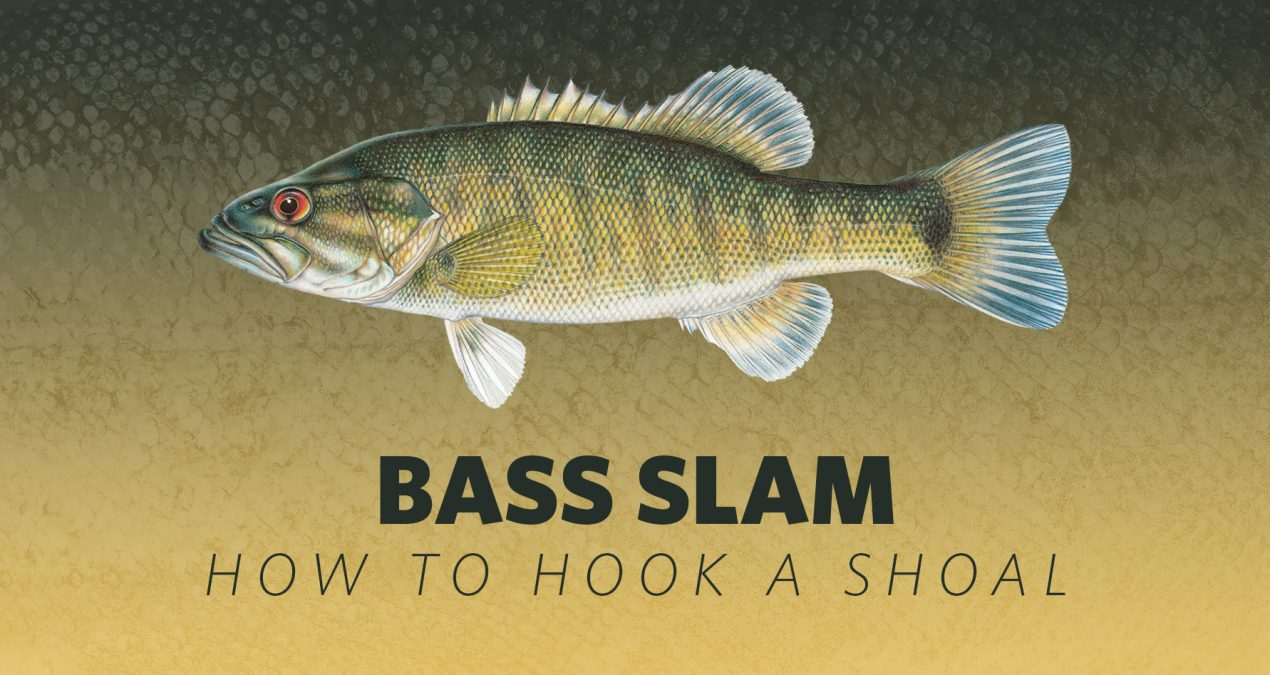 How to Hook A Bass Slam: Shoal Bass