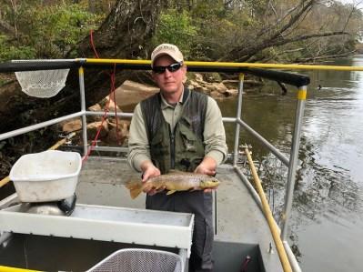 trout BNT Chatt TW sample at Jones MarkR Nov 2018