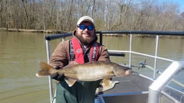 Biologist holds walleye