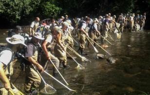 Volunteers help survey stream for aquatic species.