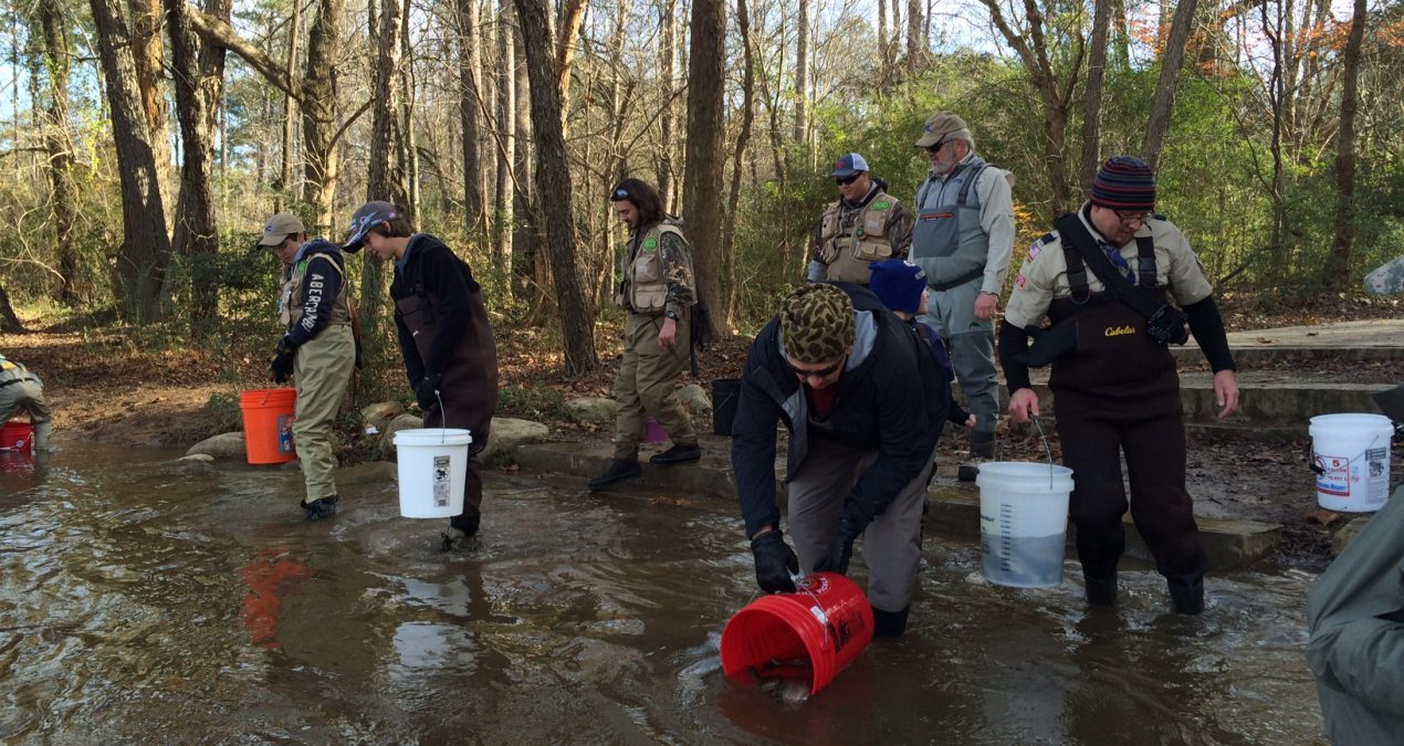 Georgia Fishing Report: November 27, 2019