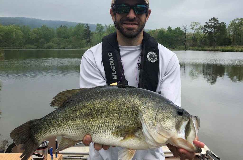 Georgia Fishing Report: April 17, 2020