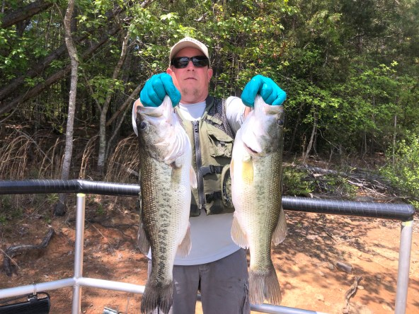 Lake Nottely Largemouth