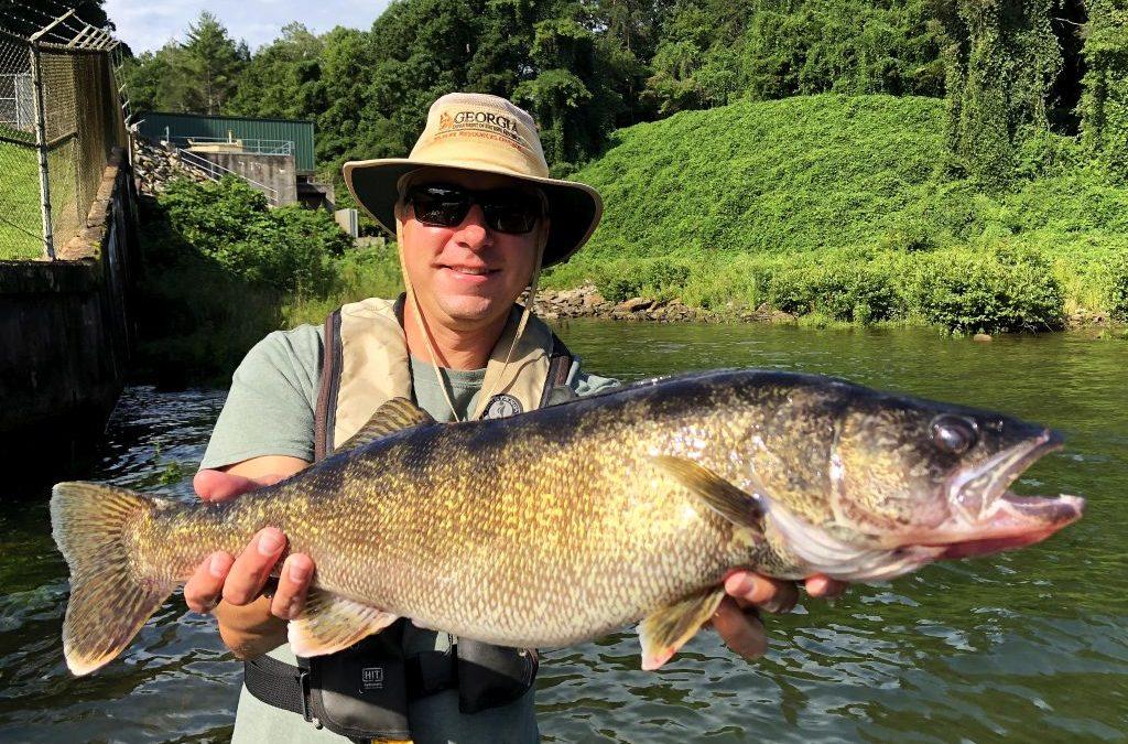 Georgia Fishing Report: August 21, 2020