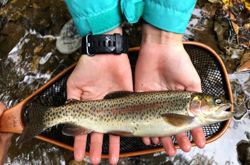 Georgia Fishing Report: October 8, 2021