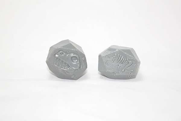 G4695 Fossil Rocks