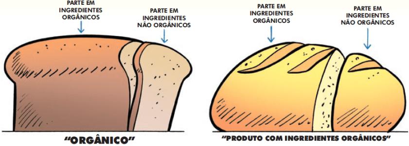 organico-ou-nao