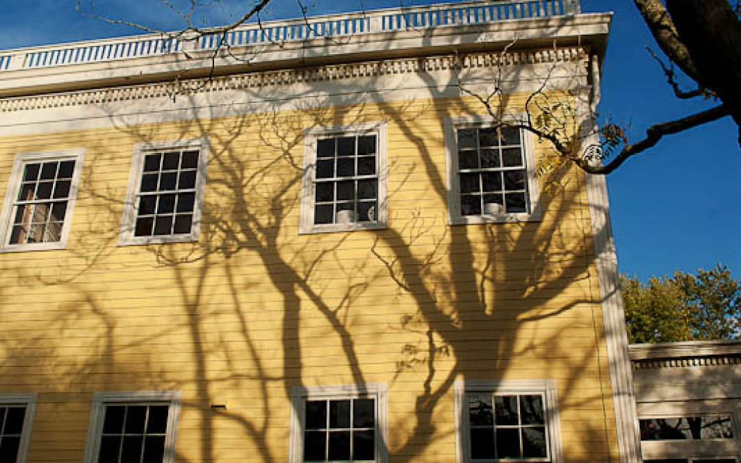 Historic Renovation : Windows