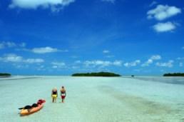 Expériences en voiture de location - Floride, Entre Plage et Nature