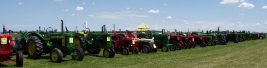 Tractors lined up at Gera Old Tractor Days