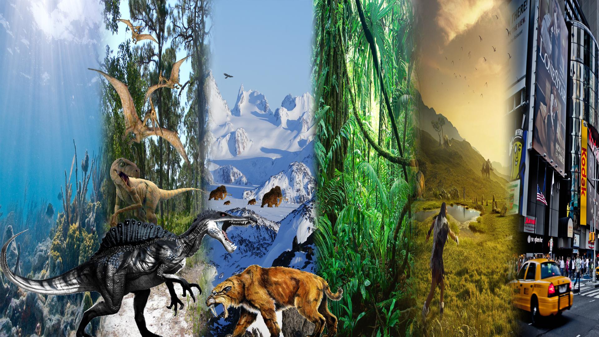 Earth Artifact Evolution Of Life On Earth Wallpaper Idea
