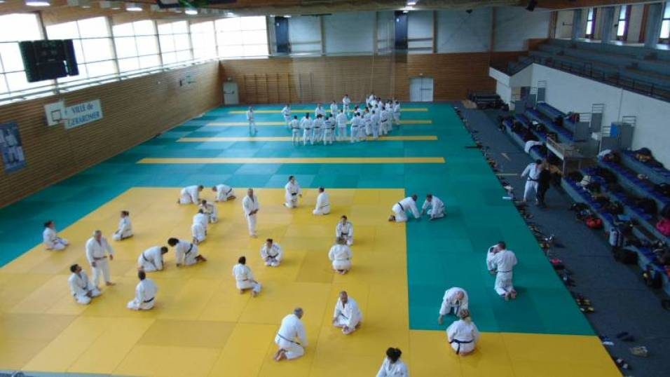 stage national judo 2018 (1)