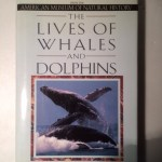The Lives of Whales and Dolphins: From the American Museum of Natural History