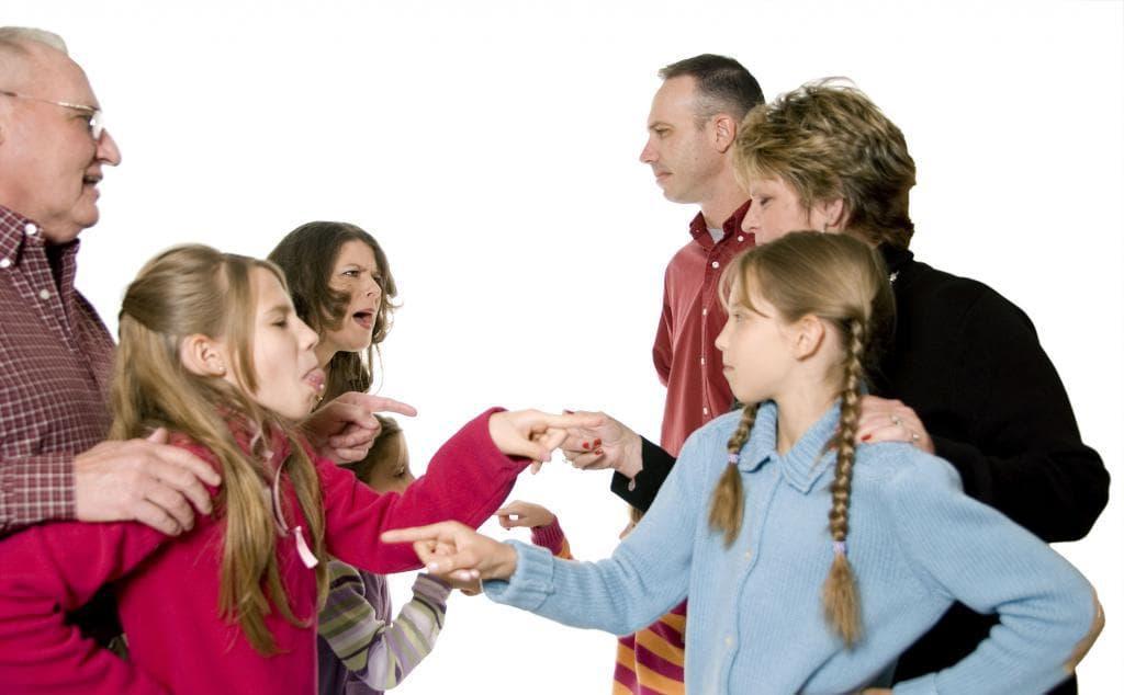 Любовь, взаимопонимание и поддержка в семье. В зависимости от сложности, 4, 10, 16 или 20 сессий